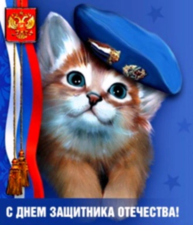23 февраля картинки котенок